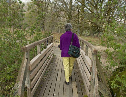Walking Tour in Loch Lomond